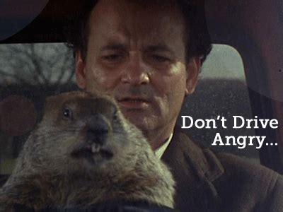 groundhog day driving 301 moved permanently