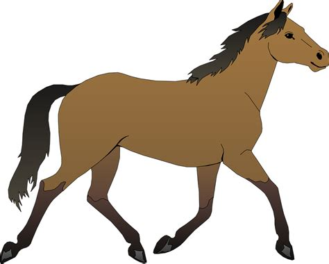clipart mare brown stallion 183 free vector graphic on pixabay