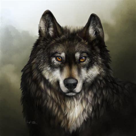 imagenes de negro lobo imagens mais lindas do mundo de lobo pesquisa google