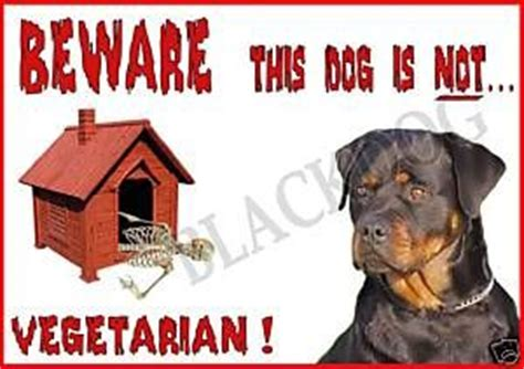 beware of rottweiler sign signs rottweilers and signs on