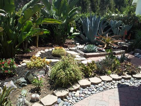 low water landscaping wide home ideas collection low