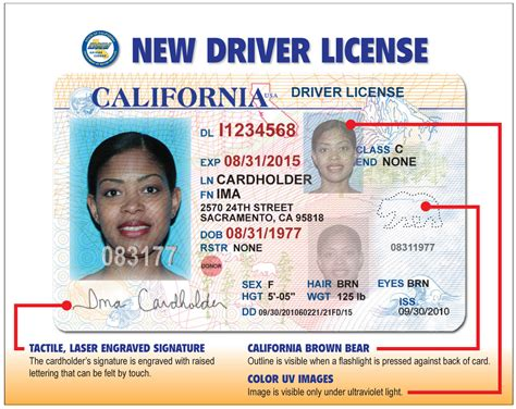 california id template david s dabbles licenses get new look