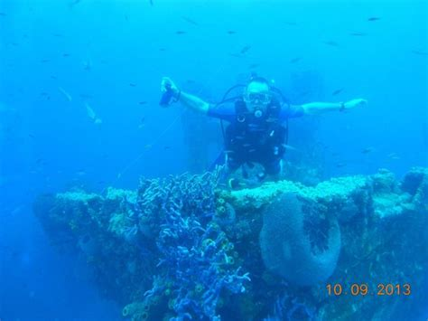 dive aruba at the bow picture of dive aruba oranjestad tripadvisor