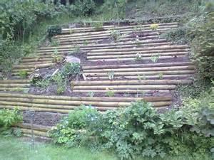 rachel the gardener planting on banks and steep slopes part 2