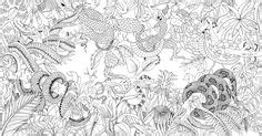 libro exotischer urwald ausmalen und jardin secret carnet de coloriage chasse au tr 233 sor antistress amazon de basford