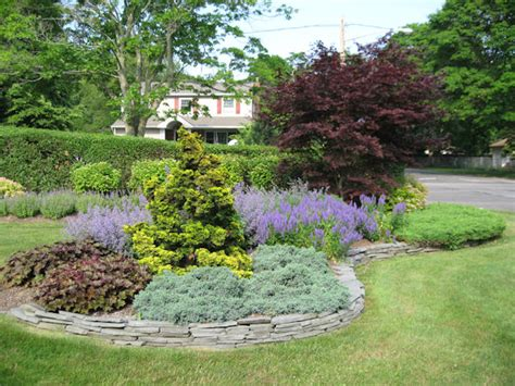 landscape design island before after pictures evergreen shrubs kaste design landscaping inc