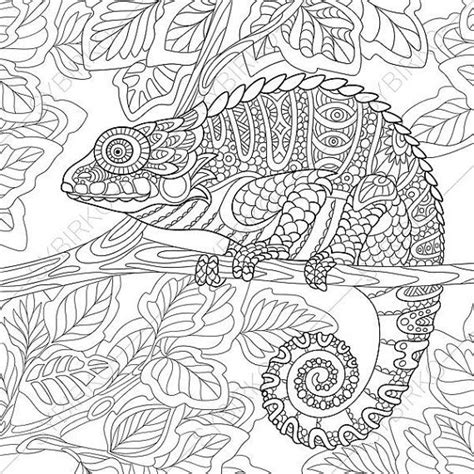 coloring pages exotic animals adult coloring pages chameleon zentangle doodle book page