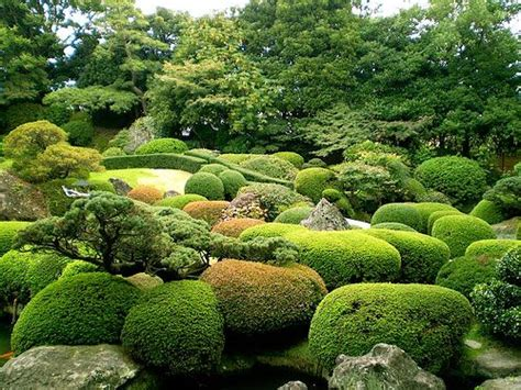 Garden Design With Pruning Plants Japanese Pruning Topiary Ueki No Te Ire All The Elements Topiaries Photos