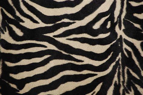 furry zebra print wallpaper for walls tan zebra print faux micro fur fabric 1 yard