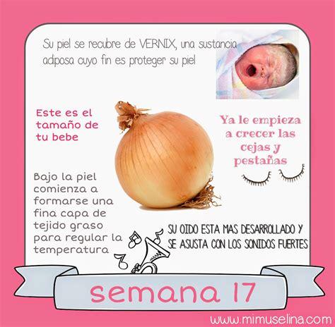 semana 16 semana 17 semana 18 bebeblog by mimuselina tu beb 233 semana a semana