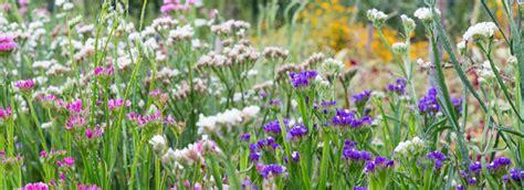 Ausbildung Garten Und Landschaftsbau Lünen by G 228 Rtnerei Ausbildung Im Zierpflanzenbau