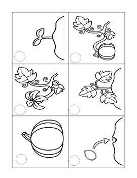 coloring pages of life cycle of pumpkin crafts actvities and worksheets for preschool toddler and