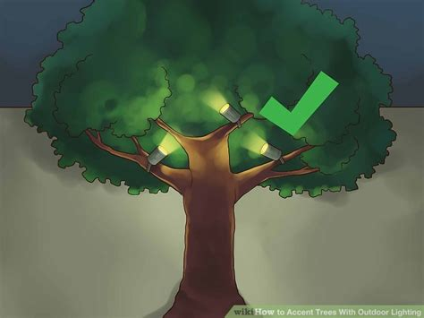 4 ways to accent trees with outdoor lighting wikihow