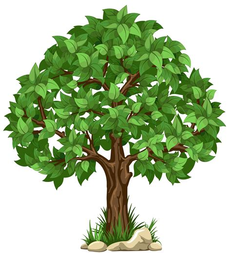 tree images clip tree clipart transparent background pencil and in color