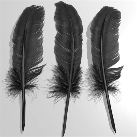 3d Model Feather
