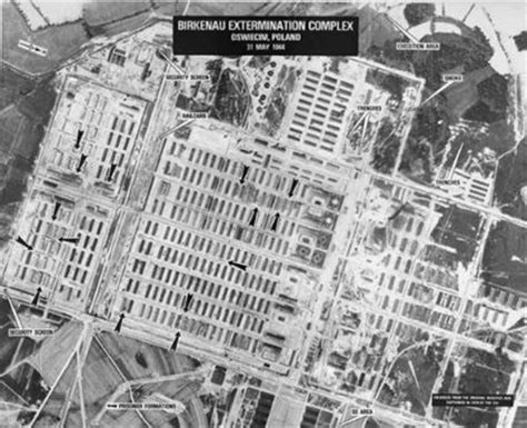 Auschwitz Records And The Holocaust