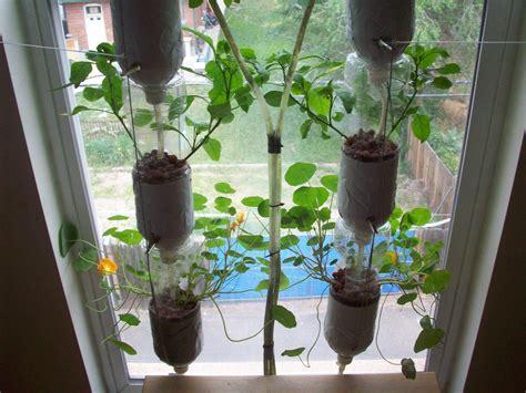 start   window farm rabbleca