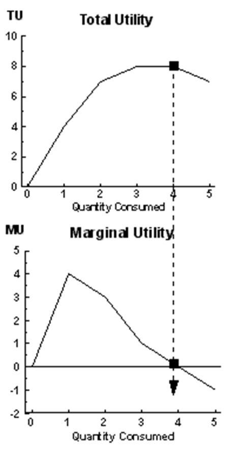 marginal utility review 4 wmv consumer behavior and demand theory