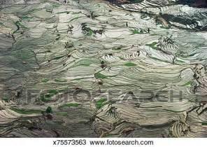 Wall Mural Prints stock photo of china yunnan ailao shan mountains