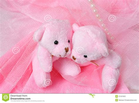 Two Amusing Pink Teddy Bear On Pink Stock Photos Image