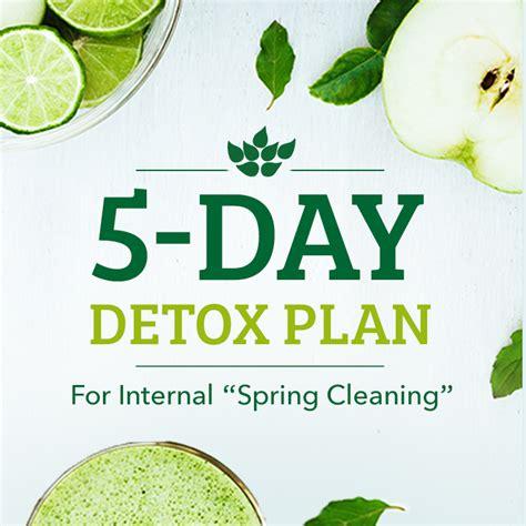 5 Day Clean Detox Plan by 5 Day Detox Plan