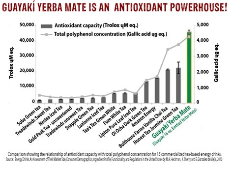 5 Reasons Why You Should Drink Yerba Mate Instead of Coffee   Spirit Science