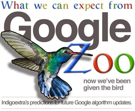google images zoo google hummingbird infographic what next for google zoo