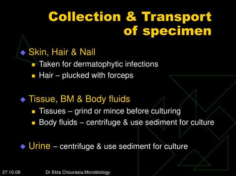 culture fungus skin hair nail with direct fluorescent koh ppt laboratory diagnosis of fungal infections powerpoint