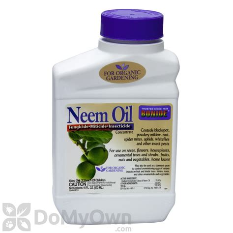 neem oil for bed bugs bonide neem oil concentrate