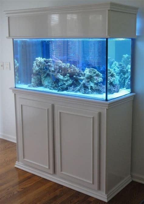 Harga Aquarium by Best 25 Fish Tanks Ideas On Amazing Fish