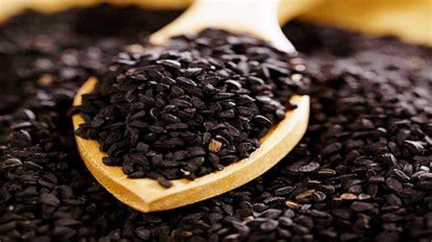 Obat Herbal Jintan Hitam manfaat dan khasiat jintan hitam habbatussauda cap kurma ajwa