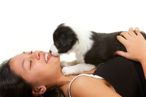 how to take care of puppies how to take care of precious puppy