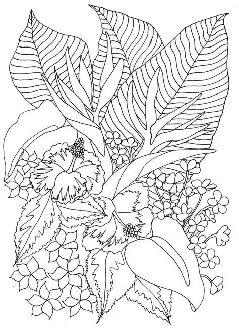 tropical leaves coloring pages tropical flowers coloring pages adult colouring flowers