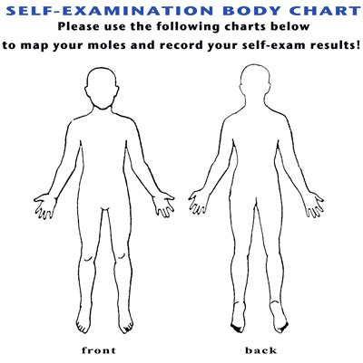 body chart diagram