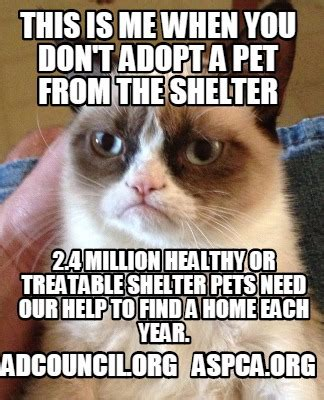 Aspca Meme - meme creator this is me when you don t adopt a pet from the shelter adcouncil org aspca org