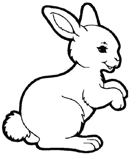 rabbit coloring pages coloringpages1001 com