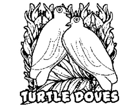 turtle dove coloring page 2 turtle doves coloring page