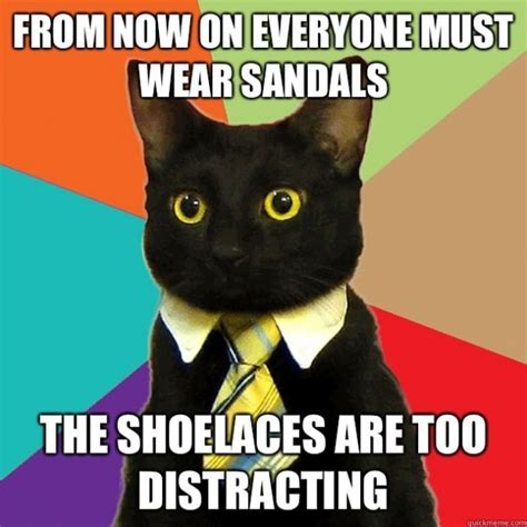 Business Cat Meme - what s sex got to do with dress codes sex and society