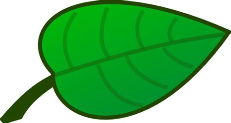 printable rainforest leaves cartoon rainforest leaves clipart best
