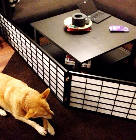 how to protect couch from dog 45 best images about dogs and your home on pinterest