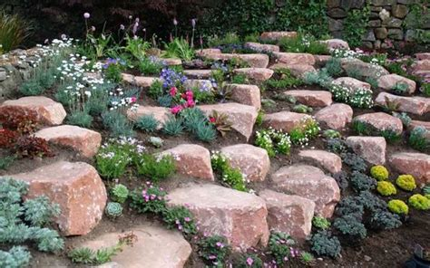 Alpine Rock Garden How To Build And Plant An Alpine Rock Garden Gardens Editor And Pandora Jewelry