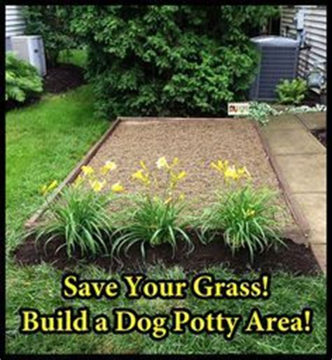 how to make a dog area in your backyard a natural way to repair brown grass from dog urine