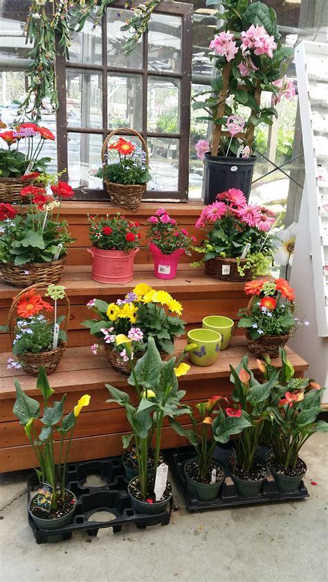 Garden Centre Decorations by A M Garden Centre On Outdoor Decor 20150510