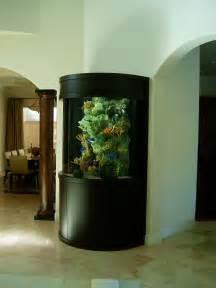 Tropical Fish Home Decor Aquariums Different Types Of Aquariums