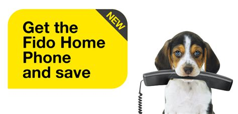 mobile phones plans and awesomeness fido