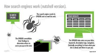 how s search engine really works a peek the