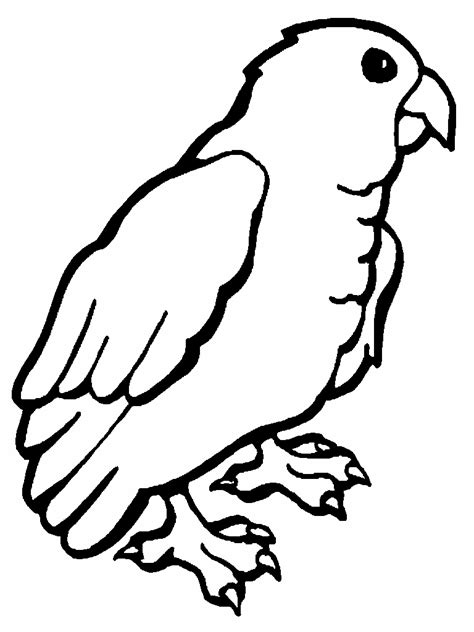 parrot coloring pages parrot coloring pages coloringpages1001