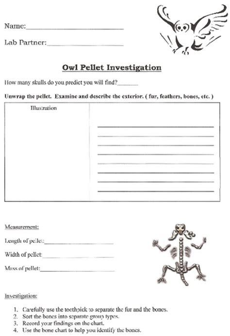printable owl worksheets worksheets owl pellet dissection worksheet opossumsoft