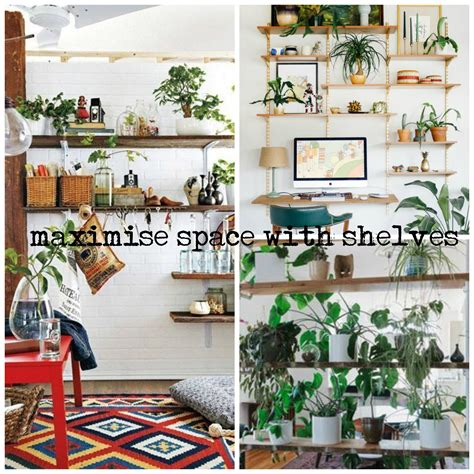 gorgeous ways to decorate your home with plants gorgeous ways to decorate your home with plants