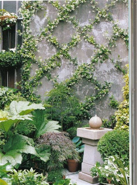 ideas for garden walls best 25 wall trellis ideas on garden projects